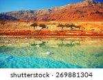 dead sea | Shutterstock . vector #269881304