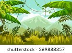 vector landscape. jungles and... | Shutterstock .eps vector #269888357
