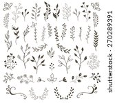 hand drawn vector floral... | Shutterstock .eps vector #270289391