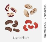collection of beans hand drawn... | Shutterstock .eps vector #270432581