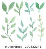 set of leaf and branch... | Shutterstock . vector #270532241