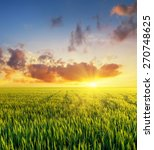 filed during bright sunset.... | Shutterstock . vector #270748625