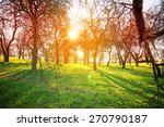 spring nature background with... | Shutterstock . vector #270790187