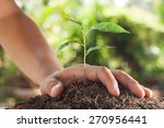 hands holding and caring a...   Shutterstock . vector #270956441