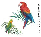watercolor parrot set. hand... | Shutterstock .eps vector #270967595