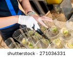 canapes on toothpicks  ... | Shutterstock . vector #271036331