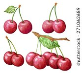 vector watercolor cherry set.... | Shutterstock .eps vector #271062689