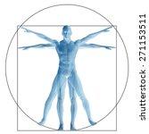 vitruvian human or man as a...   Shutterstock . vector #271153511