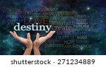 your destiny is in your hands   ... | Shutterstock . vector #271234889