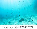 abstract underwater scene ... | Shutterstock . vector #271362677