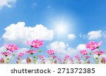 beautiful pink flowers and blue ... | Shutterstock . vector #271372385