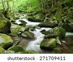 Woodland Stream In Carpathian...