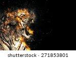 Blazzing Tiger Over Black...