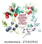 wild berries from forest.... | Shutterstock .eps vector #271922921