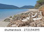 White Driftwood On The Rocks I...