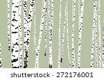 birch wood   Shutterstock .eps vector #272176001