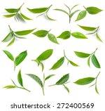 Green Tea Leaves Isolated On...
