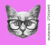 hand drawn portrait of cat with ... | Shutterstock .eps vector #272416445