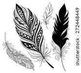 peerless decorative feather ... | Shutterstock . vector #272448449
