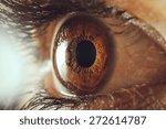 Human Eye Macro