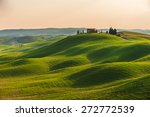 Spring In The Fields Of Tuscan...