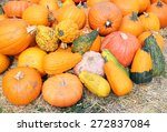 Giant Bumpy Gourd And Pumpkin...