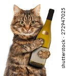 Cat With A Bottle Of Wine