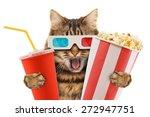 cat watching a movie | Shutterstock . vector #272947751