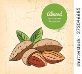 almonds illustration on... | Shutterstock .eps vector #273046685