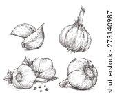 vector hand drawn set of garlic.... | Shutterstock .eps vector #273140987