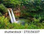 majestic twin wailua waterfalls ... | Shutterstock . vector #273156107