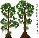 Vector Cypress Trees With...