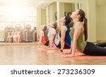 group of women making yoga... | Shutterstock . vector #273236309