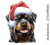 rottweiler with santa claus hat ... | Shutterstock .eps vector #273249065