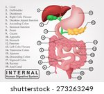 the part of internal human... | Shutterstock .eps vector #273263249