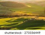 magnificent tuscan landscape ... | Shutterstock . vector #273336449