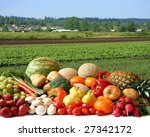 large variety of fresh fruit... | Shutterstock . vector #27342172