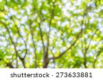 blur image of abstract bokeh of ... | Shutterstock . vector #273633881