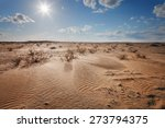 Landscape. The Desert Under A...