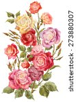 bouquet of colorful roses... | Shutterstock . vector #273880307