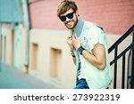 funny smiling hipster handsome... | Shutterstock . vector #273922319