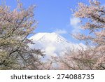cherry and fuji | Shutterstock . vector #274088735