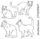 Stock vector vector outline sketches of four cats in various poses 274339847