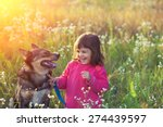 Stock photo happy little girl with dog in the meadow at sunset 274439597