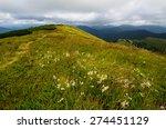 Mountain Trail Winding Through...