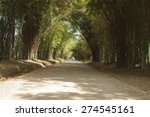Country Lanes And Bamboo Forests