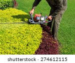 a man trimming shrub with hedge ... | Shutterstock . vector #274612115