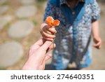 hand handing the poppies | Shutterstock . vector #274640351