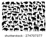 Stock vector wild animals set 274707377