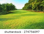 beautiful morning light in... | Shutterstock . vector #274756097